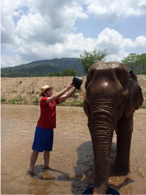 Timothy Lynch helping an elephant stay cool.